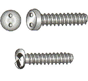 Two-Hole Drive and One-Way Drive Metric Security Screws